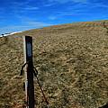 Appalachian Trail White Blaze Post by Glenn Gordon