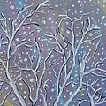 White Branches by Judith Rhue