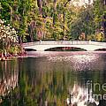 White Bridge by David Arment