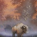 White Buffalo Spirit by Tom Shropshire