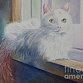 White Cat by Deborah Ronglien