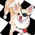 White Chihuahua - Pistachio by Rebecca Korpita
