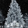 White Christmas In Texas by Joan Carroll