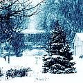 White Christmas by Karen Majkrzak