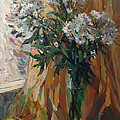 White Chrysanthemums by Juliya Zhukova