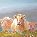 White Cows Painting by Mike Jory