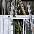 White Door by Skip Hunt