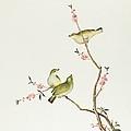 White Eye Bird by Chinese School