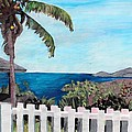 White Fence At English Harbour Antigua West Indies by M Bleichner