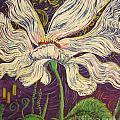 White Flower Series 6 by Stefan Duncan