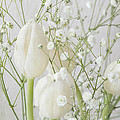 White Flowers Pii by Jacqueline Moore