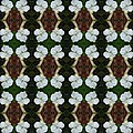 White Geranium Pattern by Nicki Bennett