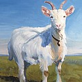 White Goat by Mike Jory