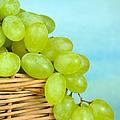 White Grapes by Grigorios Moraitis