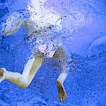 White Hair Blue Water by Dietrich ralph  Katz