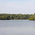 White Heron Lake Poconos Pa IIi by John Telfer
