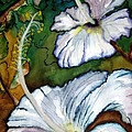 White Hibiscus by Lil Taylor