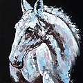 White Horse by Konni Jensen