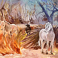 White Horses And Bull In The Camargue by Miki De Goodaboom