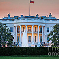 White House by Inge Johnsson