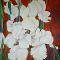White Irises by Cate Evans