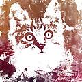 White Kitty by Justyna JBJart