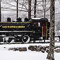 White Mountains Railroad And Train by Glenn Gordon