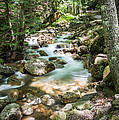 White Mountains Stream by John Crookes