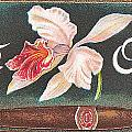 White Orchid Cigar Label by Label Art