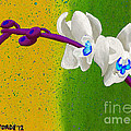 White Orchids On Yellow And Green by Laura Forde