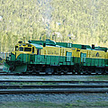 White Pass Railroad 2 by Tracy Winter