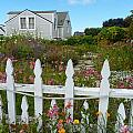 White Picket Fence In Mendocino by Kris Hiemstra