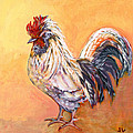 White Rooster by Jennifer Lommers