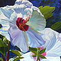 White Rose Of Sharon by Janet Zeh