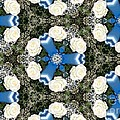 White Roses And Babys Breath Kaleidoscope by Rose Santuci-Sofranko