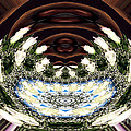 White Roses And Babys Breath Polar Coordinates Effect by Rose Santuci-Sofranko