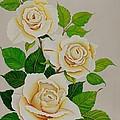 White Roses - Vertical by Carol Sabo