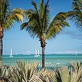 White Sails. Mauritius by Jenny Rainbow
