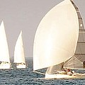 White Sails by Spyglass Galleries -  Captain Layne
