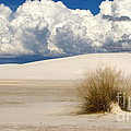 White Sands Cross by Marilyn Smith