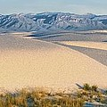 White Sands Morning #1 - New Mexico by Nikolyn McDonald