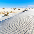White Sands - Morning View White Sands National Monument In New Mexico. by Jamie Pham