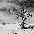 White Sands National Monument 1 Light Mono by Gareth Burge Photography