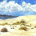 White Sands New Mexico U S A