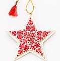 White Star by Anne Gilbert