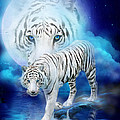 White Tiger Moon by Carol Cavalaris