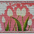 White Tulips On Pink In Stained Glass by Barbara Griffin