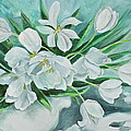 White Tulips by Virginia Ann Hemingson