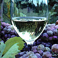 White Wine Reflections by Elaine Plesser