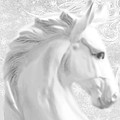 White Winter Horse 1 by Tony Rubino